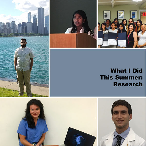 Some TouroCOM student summer internships and research 2016
