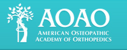Student American Osteopathic Academy of Orthopedics (SAOAO) - Harlem, Middletown